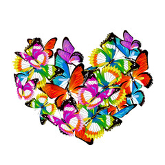color heart, butterflies, valentine card