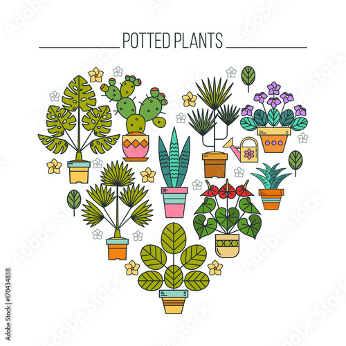 Potted plants. Flowers in pots. Arrangement of potted flowers in the shape of a heart. Isolated on white background.  sc 1 st  Fotolia.com & Potted plants. Flowers in pots. Arrangement of potted flowers in the ...