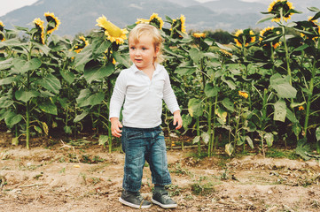 Adorable little 1-2 year old kid boy playing with giant sunflowers in a field. Happy childhood in a countryside.