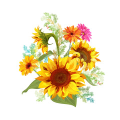 Bouquet autumn flowers: yellow sunflowers, gerbera daisy flower, small green twigs of Asparagus on white background. Digital draw, illustration in watercolor style for design, vector