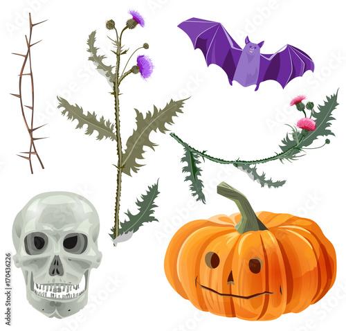 Set of Halloween symbols: skull, bat, orange pumpkin with eyes ...