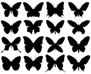 Butterfly silhouette set