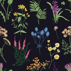 Floral seamless pattern with colorful forest herbs, herbaceous plants and blooming wild flowers on black background. Botanical vector illustration for textile print, wallpaper, wrapping paper.