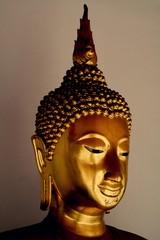 Face of golden buddha statue