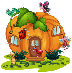 Pumpkin house with many bugs