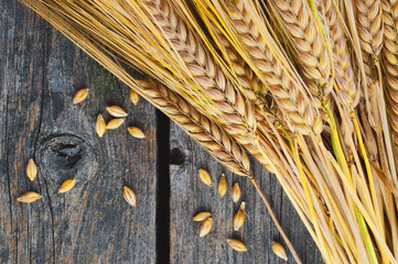 Wheat on wooden boards.