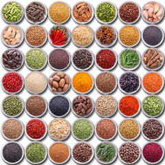 Wall Mural - Large collection of different spices and herbs