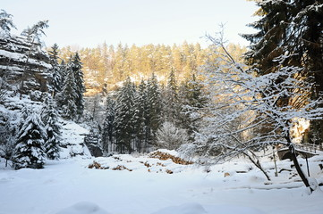 Winter landscape of Bohemian Switzerland