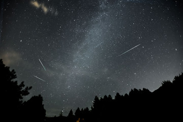stelle cadenti nella notte di san lorenzo Wall mural