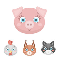 Protein, raccoon, chicken, pig. Animal's muzzle set collection icons in cartoon style vector symbol stock illustration web.