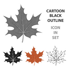 Maple leaf icon in cartoon style isolated on white background. Canadian Thanksgiving Day symbol stock vector illustration.