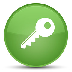Key icon special soft green round button