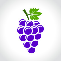 wine grapes icon concept