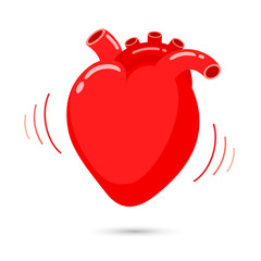 Human heart with beat design. Internal organ vector illustration isolated on white background.