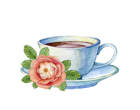 Hand drawn watercolor illustration of vintage porcelain teacup and flowers rose hips on a white background