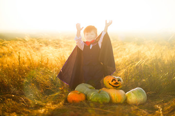 Portrait of a little boy dressed as a dracula outdoors in a pumpkin patch on sunset background. Halloween