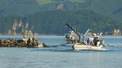 北海道噴火湾 ホタテ漁船