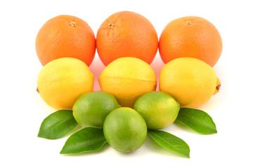 Citrus fruits, isolated on white.