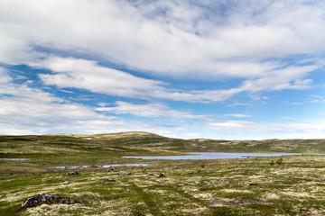 barren tundra landscape landscape in the north of Russia