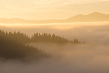 Morning autumn fog in the mountains