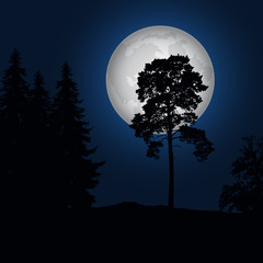 Realistic illustration of a landscape with coniferous trees under a blue night sky with a luminous moon
