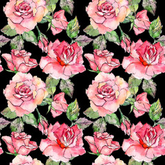Wildflower rose flower pattern in a watercolor style. Full name of the plant: rose pink. Aquarelle wild flower for background, texture, wrapper pattern, frame or border.