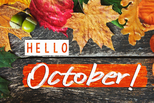 Hello October card, Fall composition from leaf. vintage forest filter