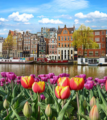 Fabulous, incredibly beautiful magical landscape with a river and tulips in Amsterdam, Holland, Europe.