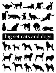 big set cats and dogs. silhouettes. vector