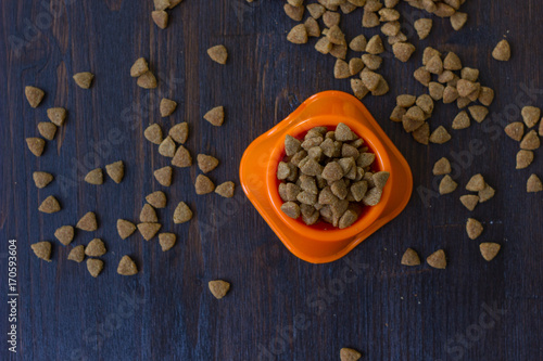 Top view of dry pet food in a bowl.