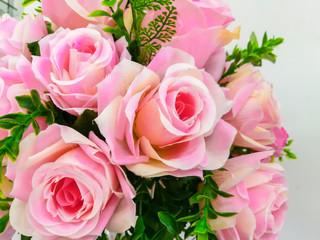Begonia, Blossom, Bouquet, Flower, Petal