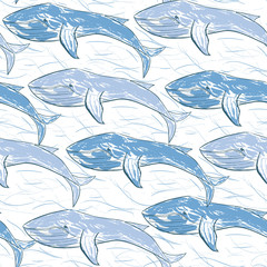 Blue whales with chaotic lines of waves hand-drawn vector seamless background pattern