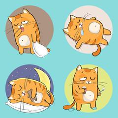 Cute cat character. Set of cute cartoon cat in various poses