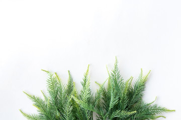 Christmas tree on a white background, free space for text