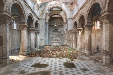 Lost Church with Plants