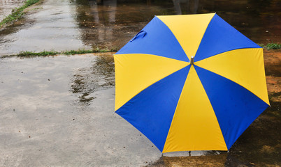 blue and yellow umbrella
