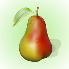 juicy red- yellow pear and leaf, vector illustration