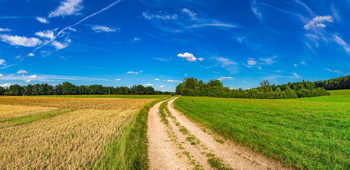 Nature Panorama view of landscape fields, path, grassland, trees and blue Sky