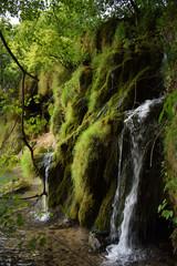 waterfall among plants in plitvice lakes