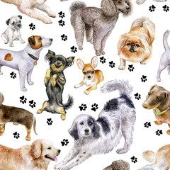 Seamless pattern with dogs. Dogs on a color background. Watercolor. Illustration.