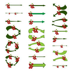 Arrows. Set of creative colored vector arrows with berries. Original arrow-shaped elements with a berries. Vector illustration.