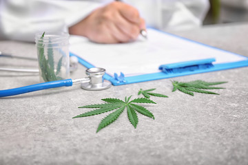 Hemp leaves and doctor writing something