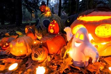 Halloween pumpkins - outdoor garden scene