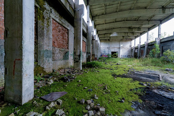 Abandoned factory covered in green moss