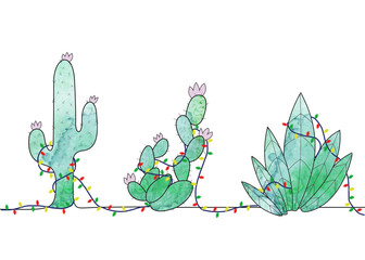 Holiday Cacti Illustration