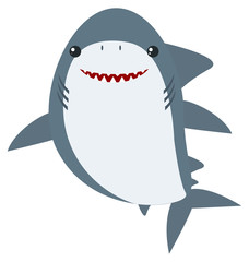 Great white shark on white background