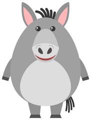 Gray donkey on white background