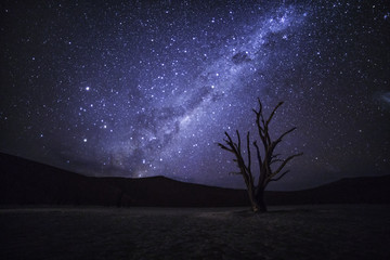Milky Way above deadvlei, Namibia