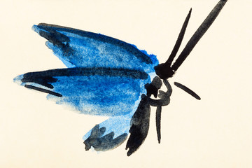 moth with blue wings hand painted on colored paper
