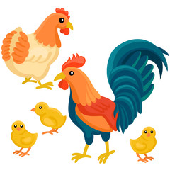 Adult hen and rooster with tree chickens on the white background / There are cute family of hen with their chickens in cartoon style